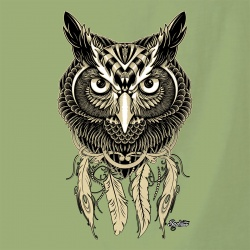 Bad River - Little Owl