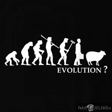 Evolution Mouton
