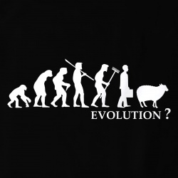Evolution Mouton