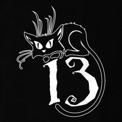 Supersticious Cat
