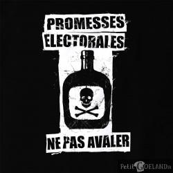 Promesses électorales