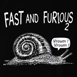 Fast and Furious 2