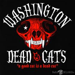 WDC - A Good Cat