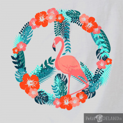 Flamingo Peace