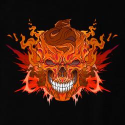 Acid Pirate Fire