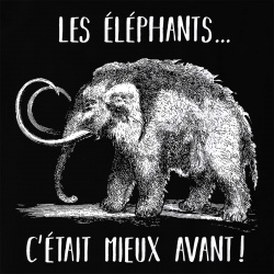 Les éléphants c'était mieux avant