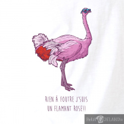 J'suis un flamand rose