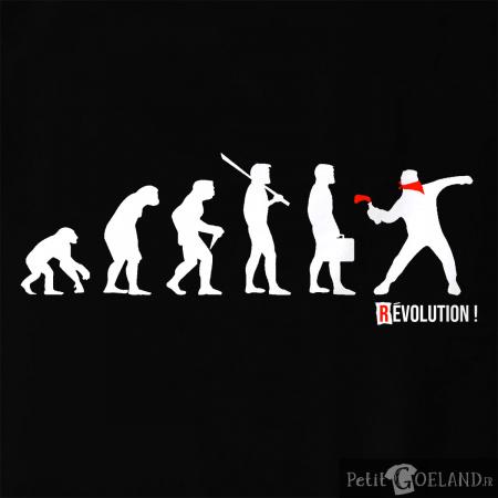 Révolution 2