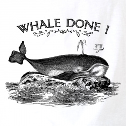 Whale Done