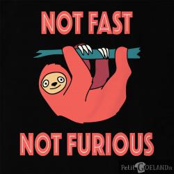 Not fast not furious