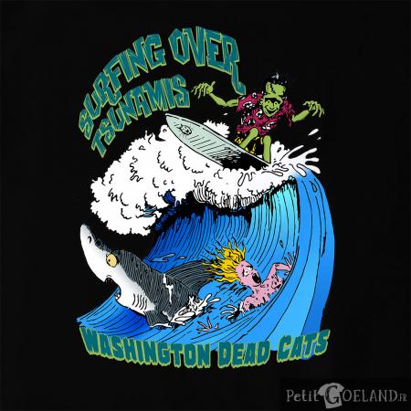 Surfing Over Tsunamis