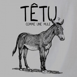 Têtu comme une mule